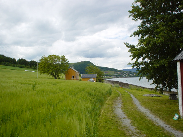 Trondheimfjord