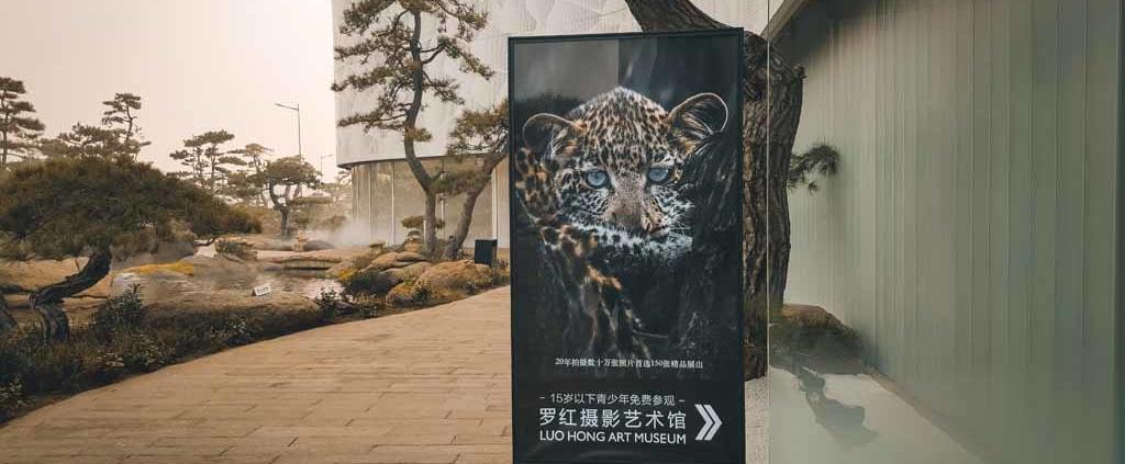 Luo Hong Art Museum