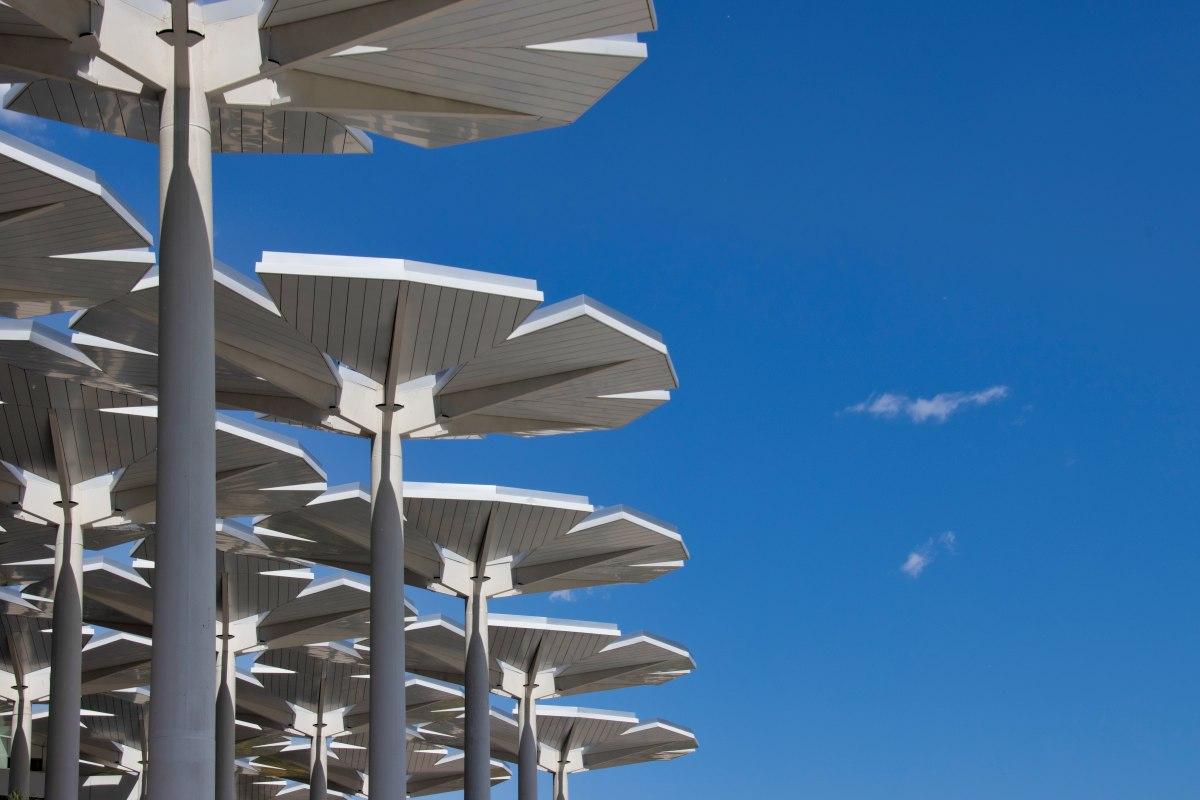 Riesige weiße Dekoblumen beim Internationalen Pavillon auf der Pekinger Garden Expo