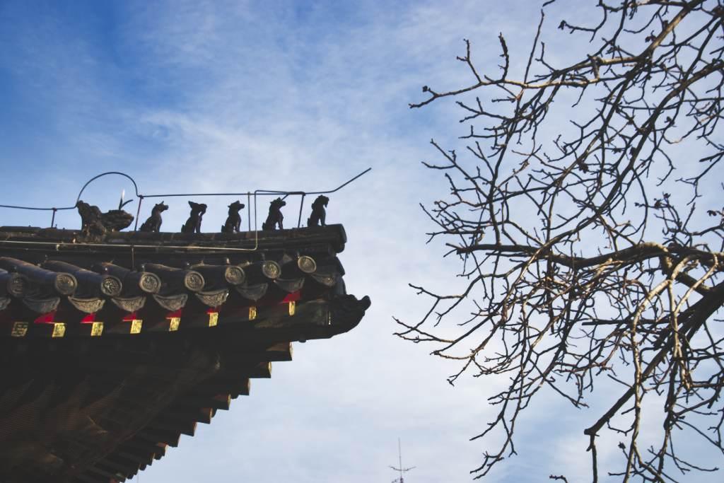 Links Dachreiter und rechts kahler Winterbaum