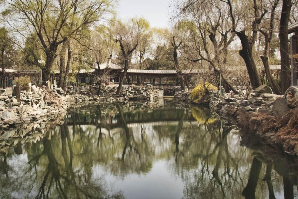 Teich in Song Qinglings Residenz, Bäume mit erstem Frühlingsgrün spiegeln sich darin.