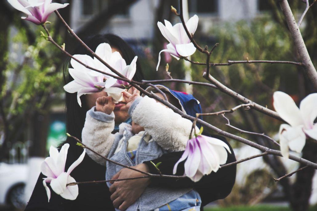 Kleinkind be-greift Magnolienblüten