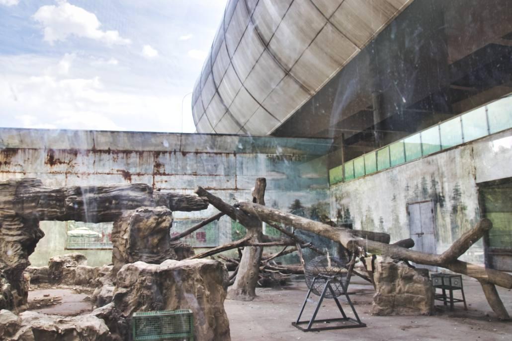 Husarenafffen-Gehege im Pekinger Zoo, direkt unter einer Hochstraße